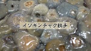 09_イソギンチャク餃子①