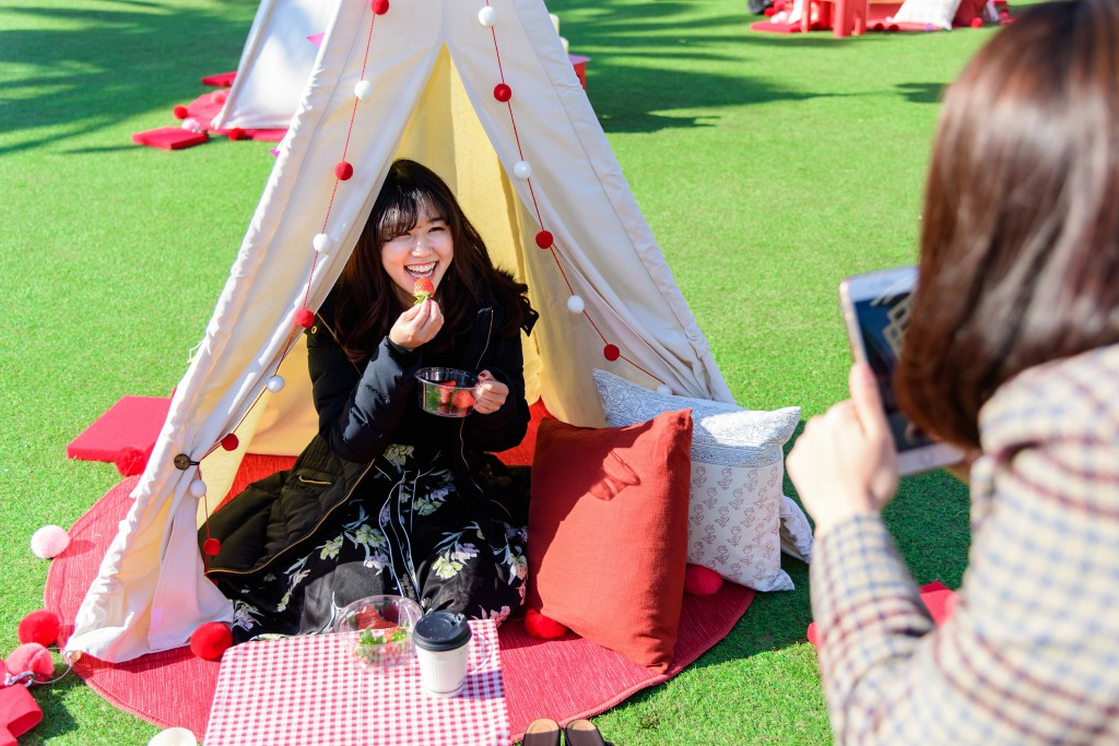 03_GLAMPING CAFE 153 From SAGA_ブログ⑧