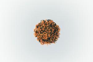 06_茶ロウリュ_玄米茶